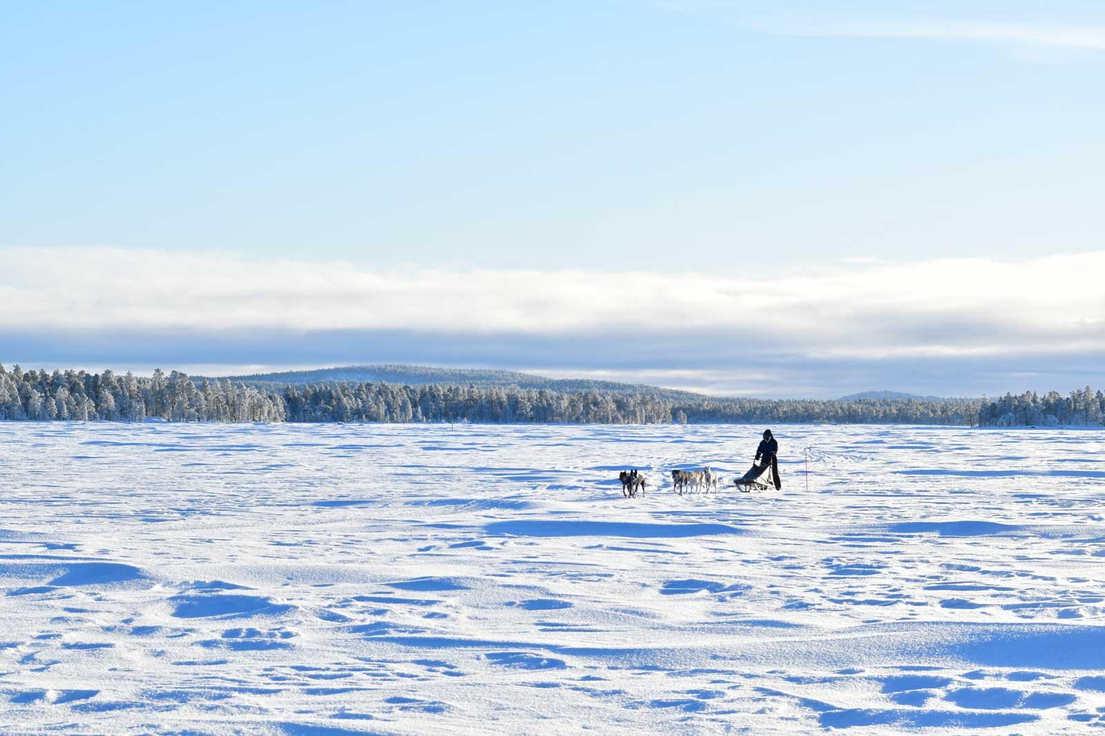Husky Safaries in Lapland, Finland.